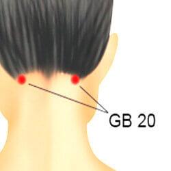 pressure point gb20