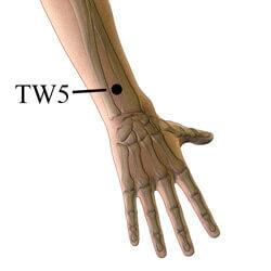 pressure point tw5