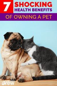 pet health benefits