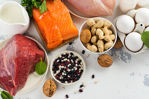 protein for losing belly fat fast
